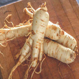 Panax Ginseng root extract - The Skincare Chemist